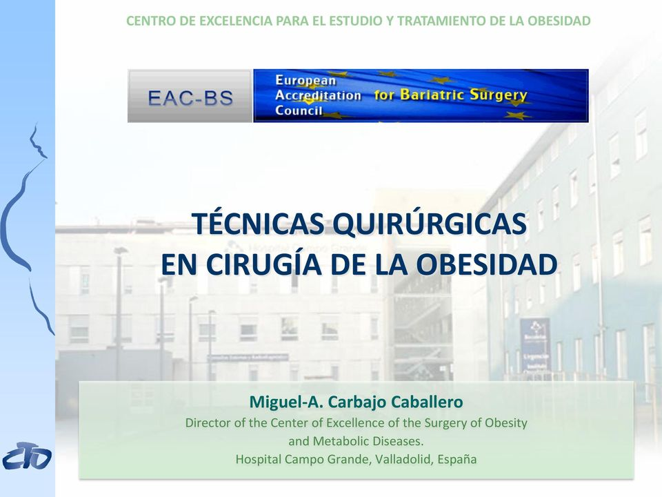 Carbajo Caballero Director of the Center of Excellence of the