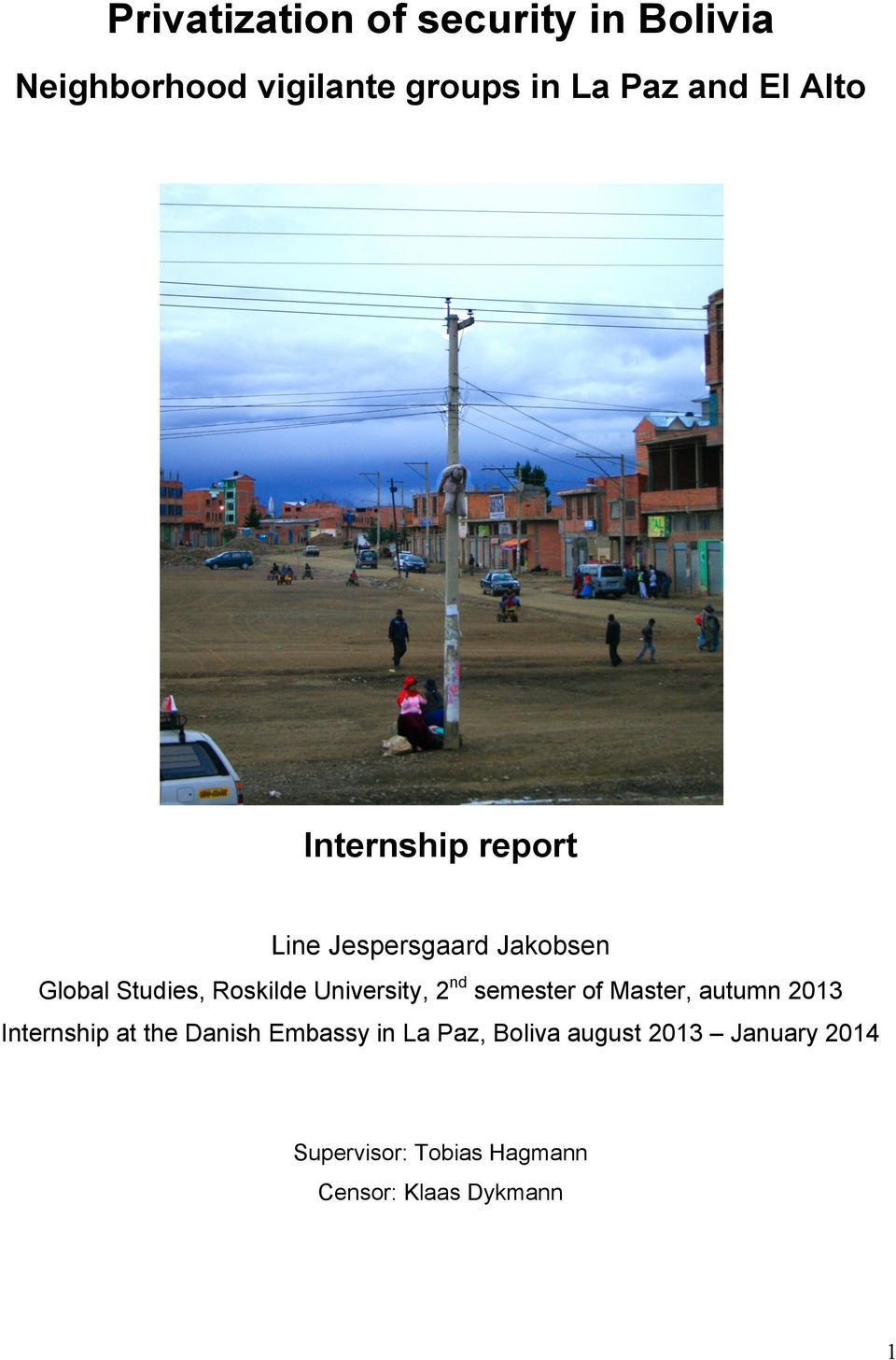 University, 2nd semester of Master, autumn 2013 Internship at the Danish Embassy in