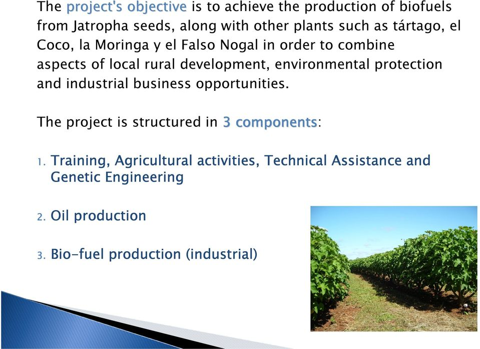 environmental protection and industrial business opportunities. The project is structured in 3 components: 1.