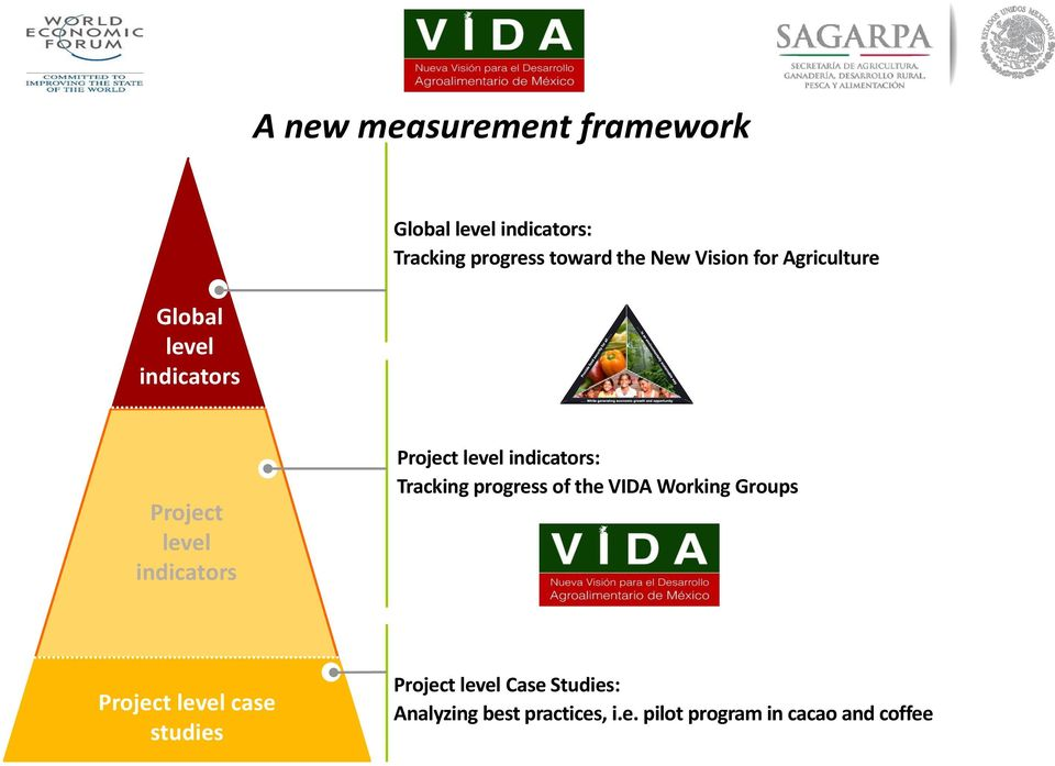indicators: Tracking progress of the VIDA Working Groups Project level case studies