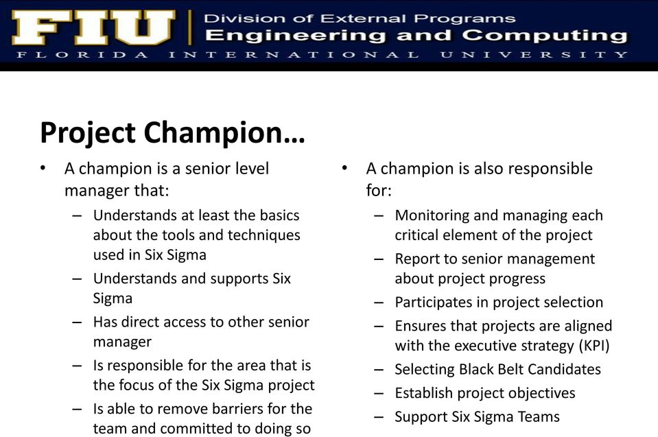 to doing so A champion is also responsible for: Monitoring and managing each critical element of the project Report to senior management about project progress Participates