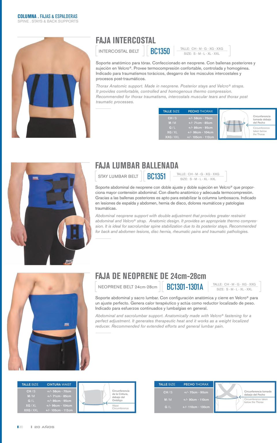 Indicado para traumatismos torácicos, desgarro de los músculos intercostales y procesos post-traumáticos. Thorax Anatomic support. Made in neoprene. Posterior stays and Velcro straps.