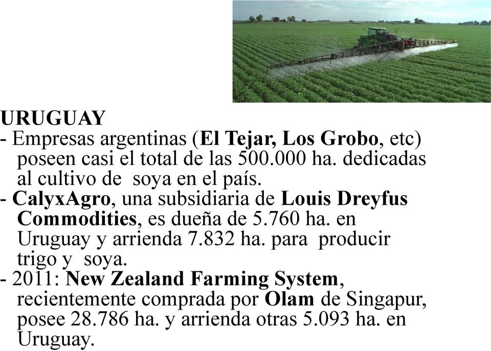 - CalyxAgro, una subsidiaria de Louis Dreyfus Commodities, es dueña de 5.760 ha.