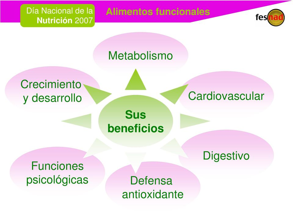 Metabolismo Sus beneficios