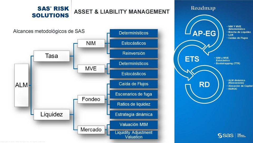 sas risk management for insurance pdf