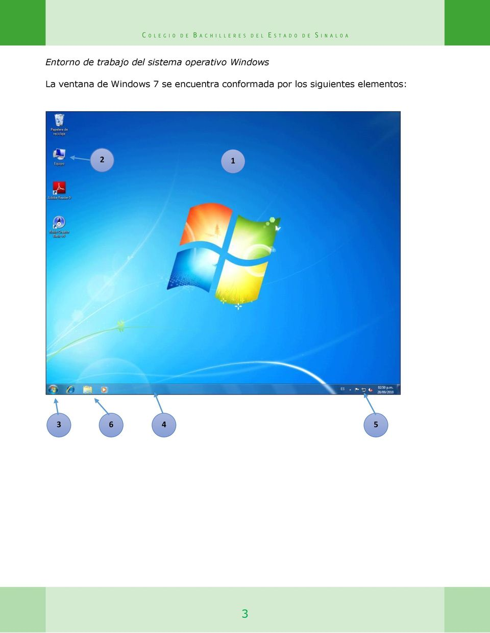 Windows 7 se encuentra conformada