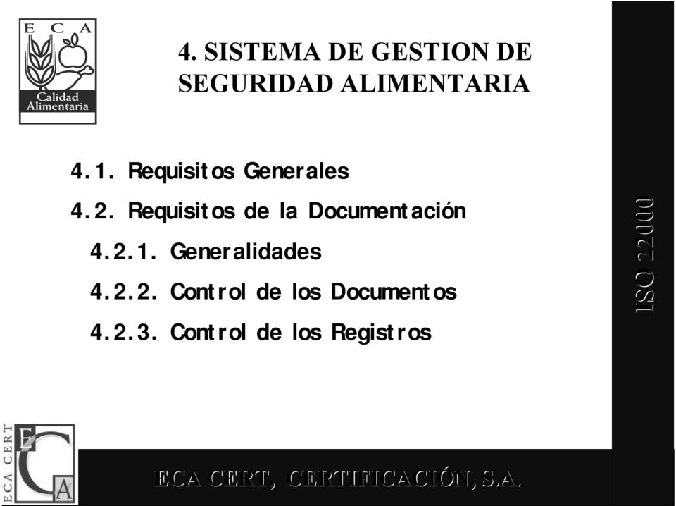 Requisitos de la Documentación 4.2.1.