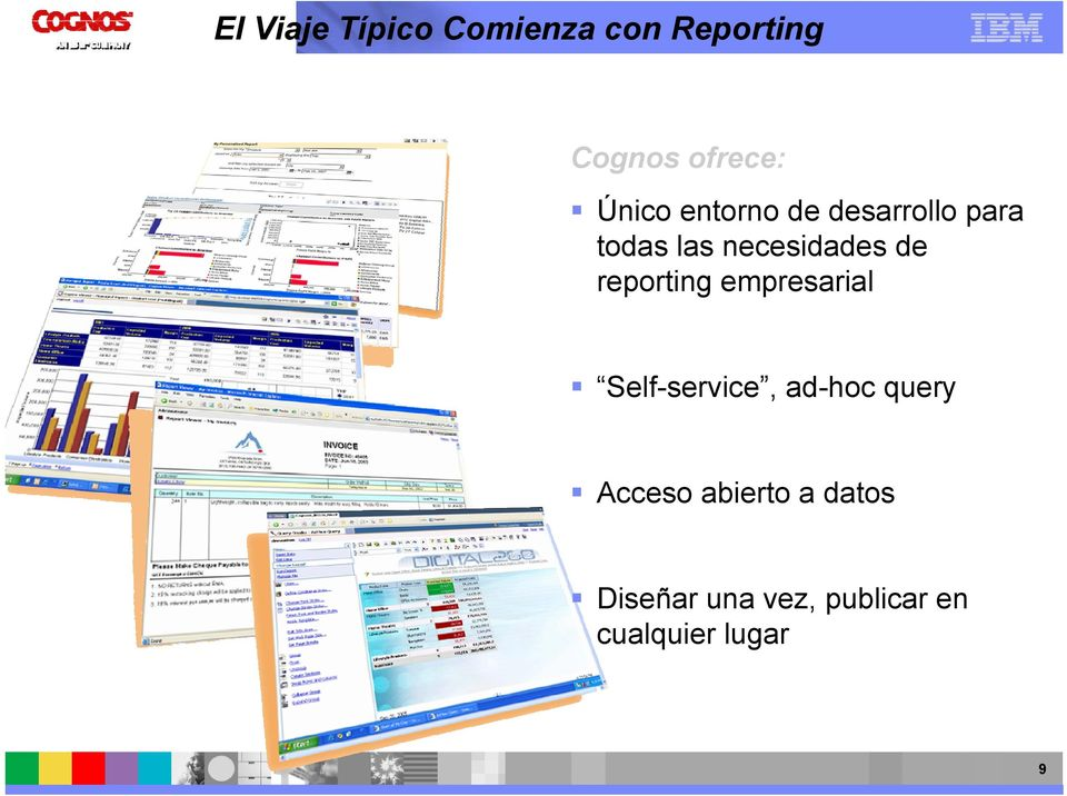 reporting empresarial Self-service, ad-hoc query Acceso