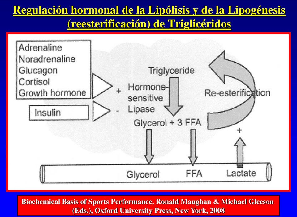 Biochemical Basis of Sports Performance, Ronald