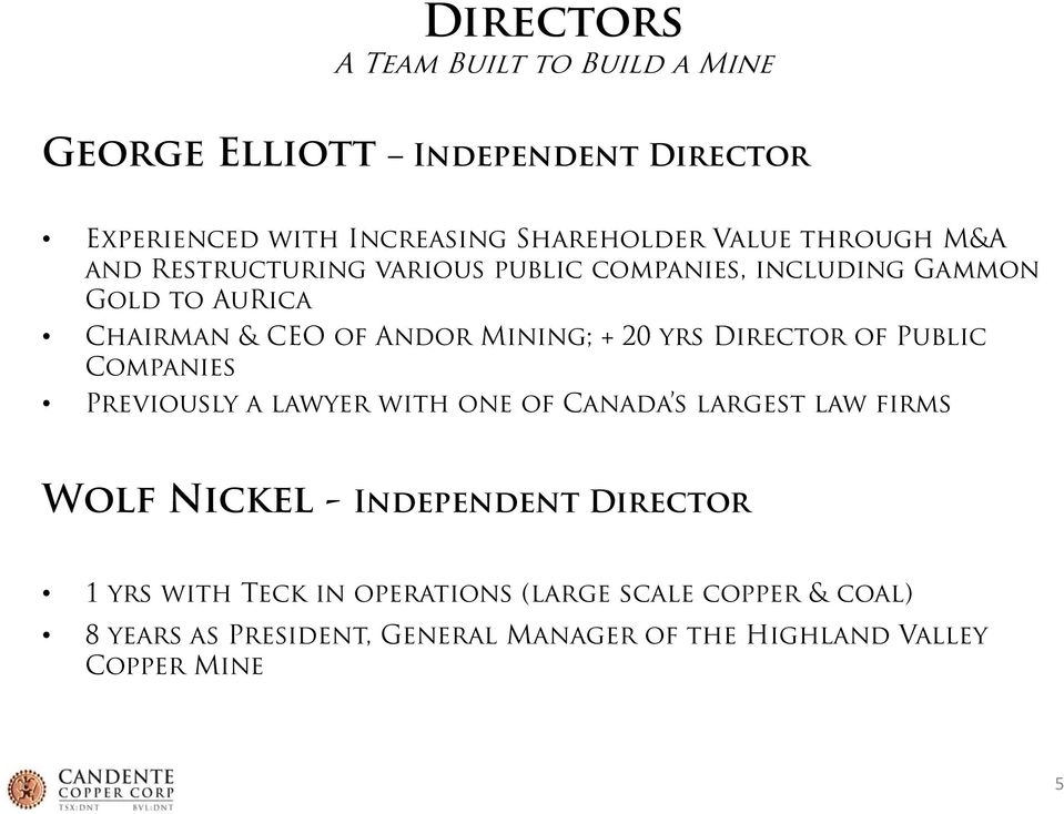 yrs Director of Public Companies Previously a lawyer with one of Canada s largest law firms Wolf Nickel - Independent Director