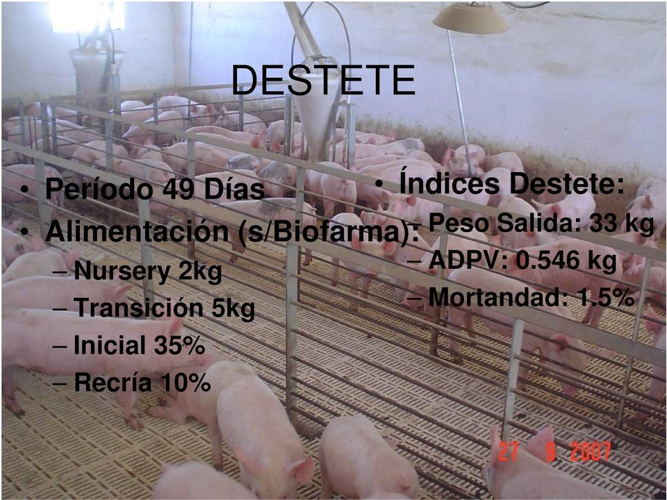 Inicial 35% Recría 10% Índices Destete: