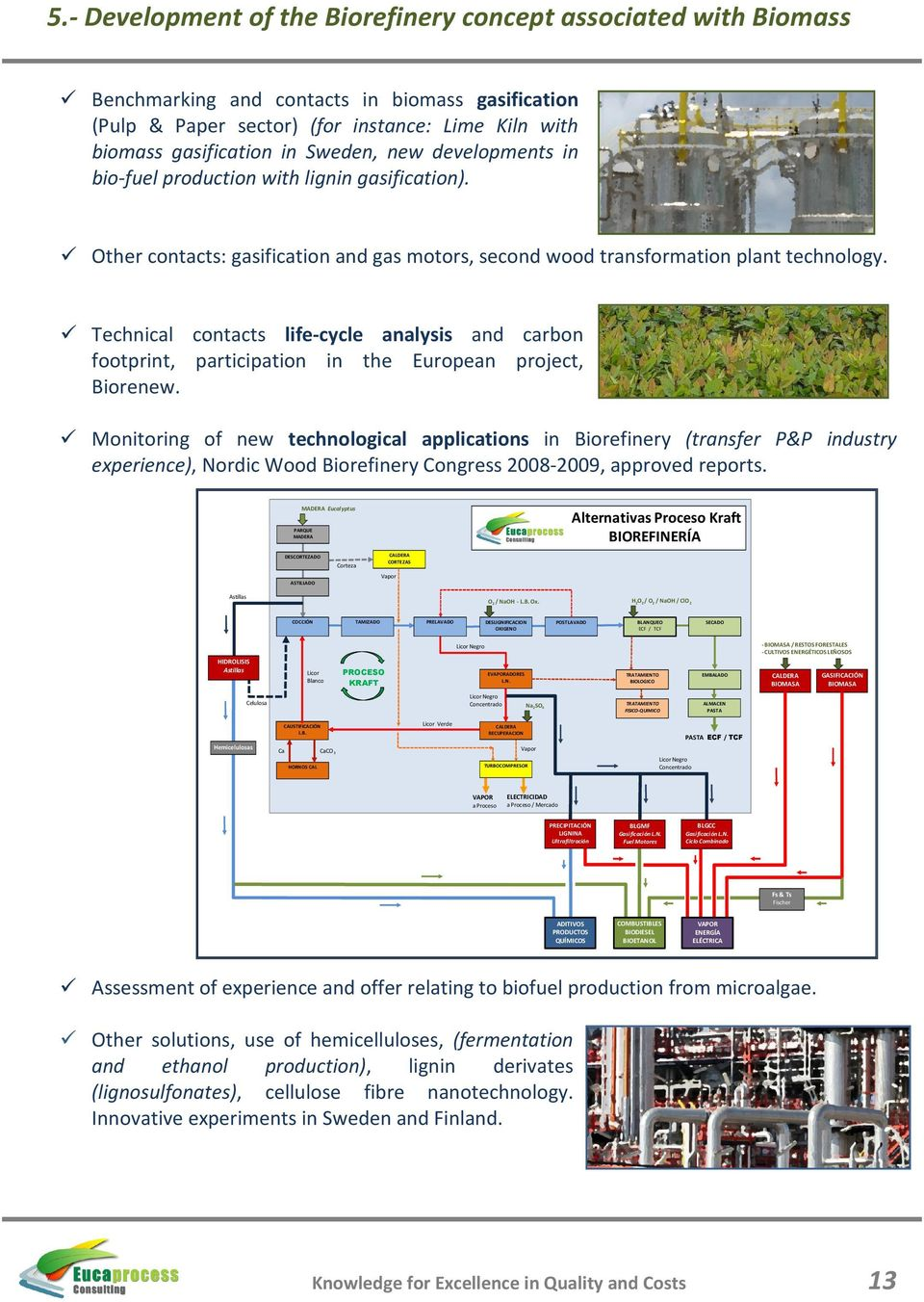 Technical contacts life-cycle analysis and carbon footprint, participation in the European project, Biorenew.