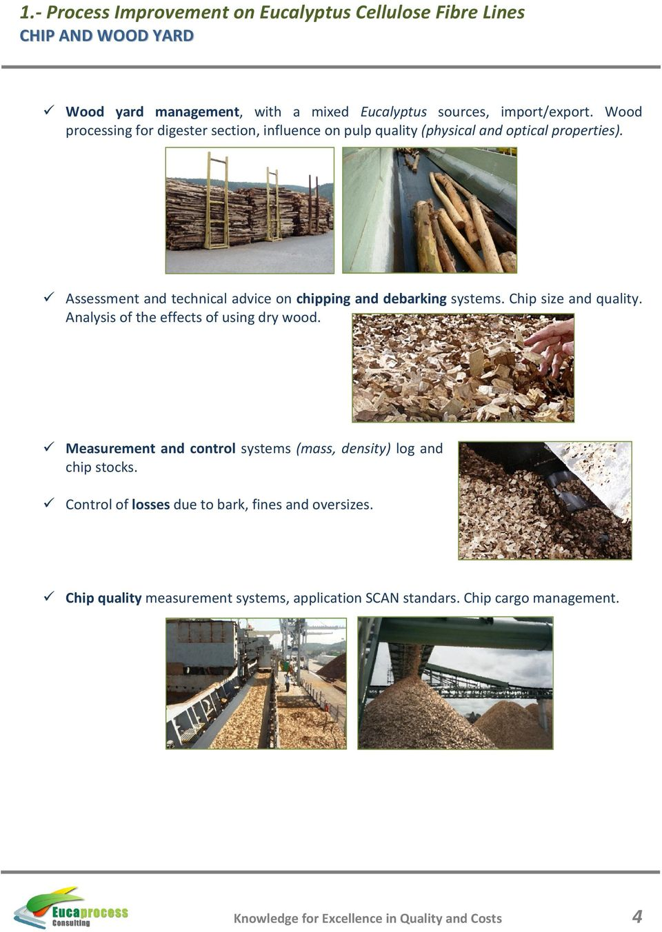 Assessment and technical advice on chipping and debarking systems. Chip size and quality. Analysis of the effects of using dry wood.