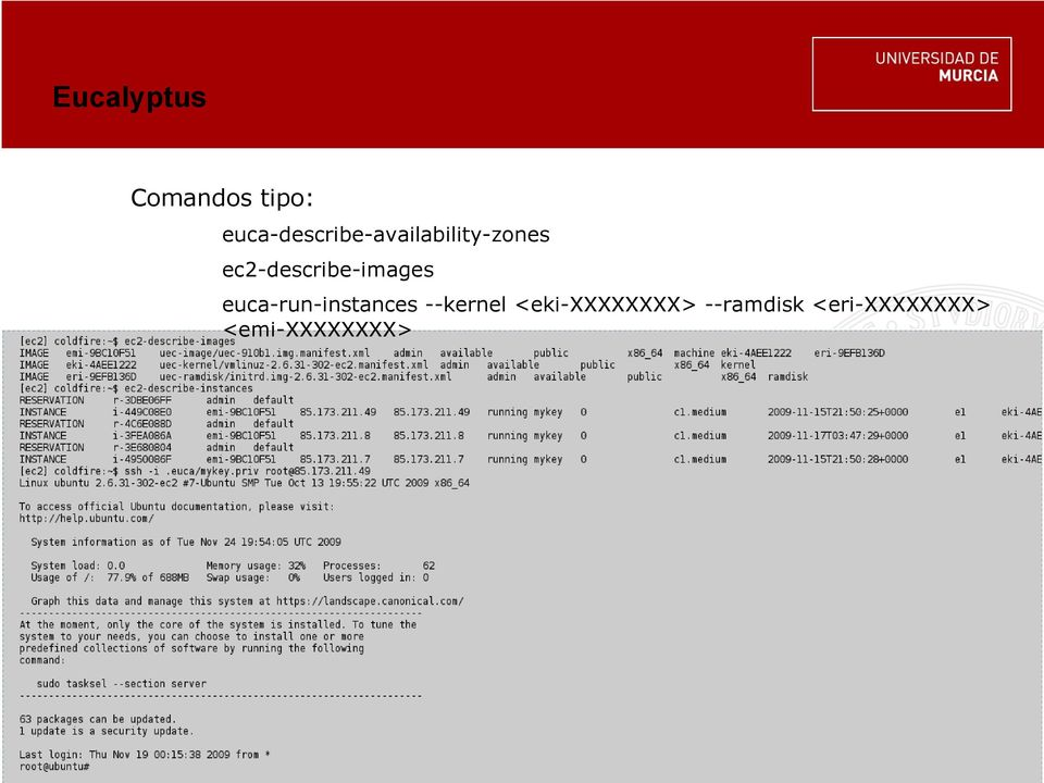 ec2-describe-images euca-run-instances