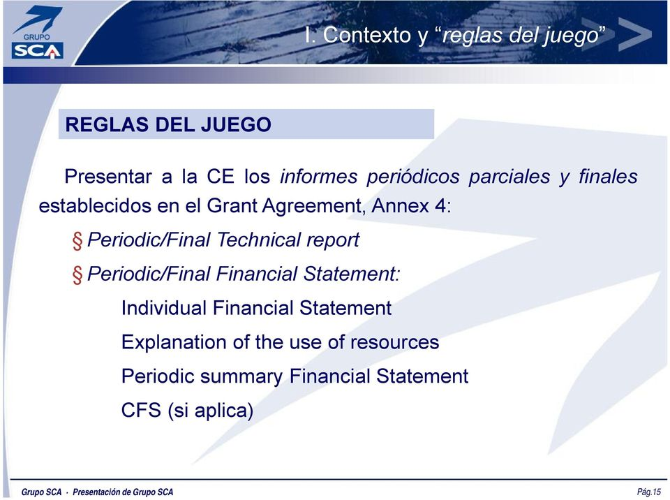Periodic/Final Financial Statement: Individual Financial Statement Explanation