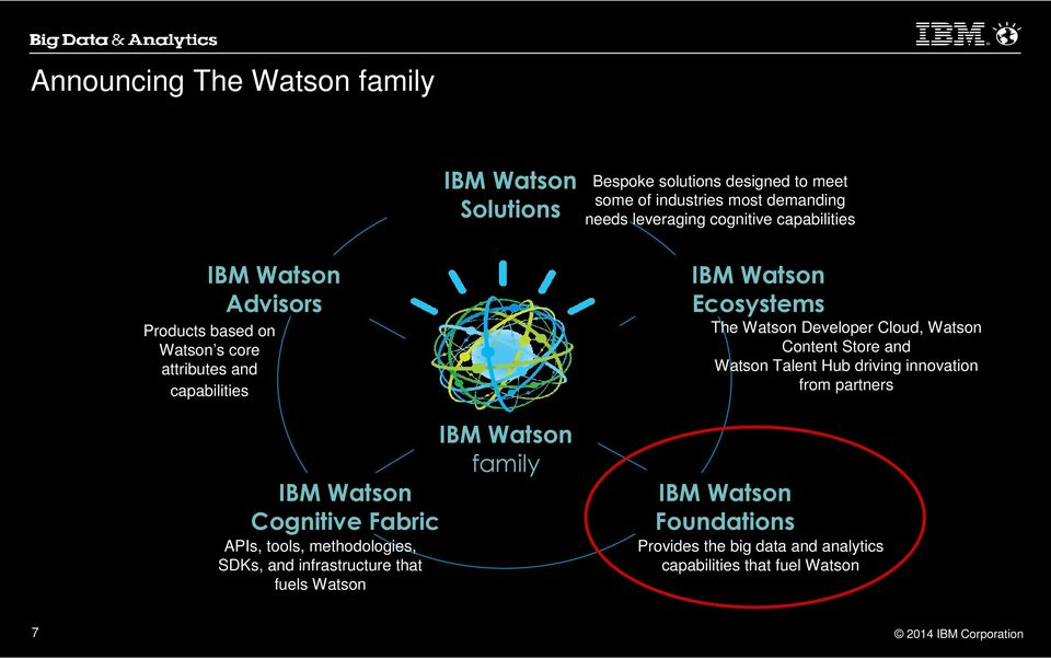 tools, methodologies, SDKs, and infrastructure that fuels Watson IBM Watson family IBM Watson Ecosystems The Watson Developer Cloud, Watson