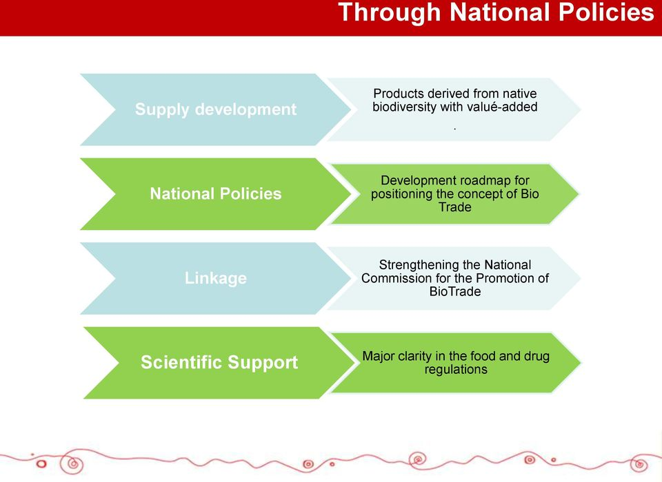 National Policies Development roadmap for positioning the concept of Bio Trade
