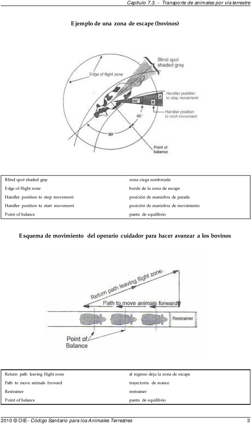 Esquema de movimiento del operario cuidador para hacer avanzar a los bovinos Return path leaving flight zone Path to move animals forward Restrainer