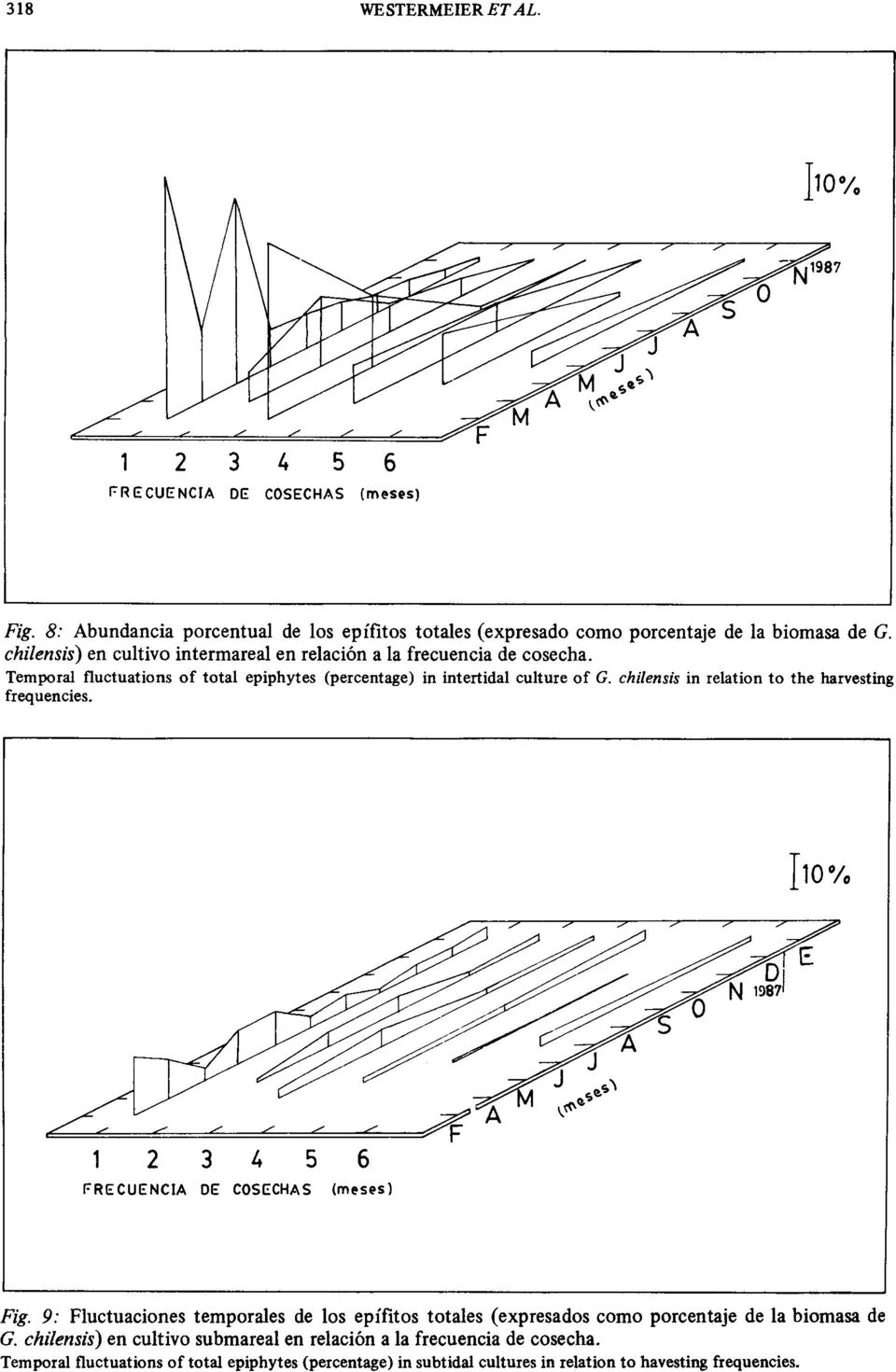 chilensis in relation to the harvesting frequencies. Iw% 2 3 4 5 6 FRECUENCIA DE COSECHAS (ml!sl's) Fig.