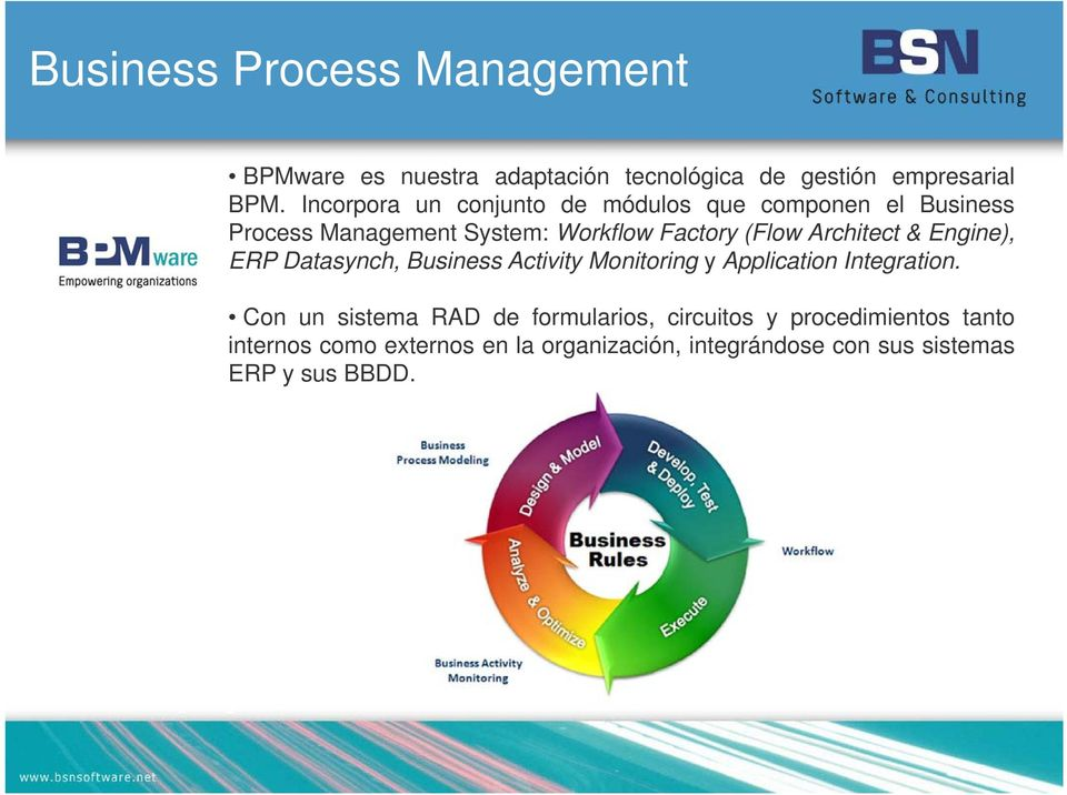 Architect & Engine), ERP Datasynch, Business Activity Monitoring y Application Integration.