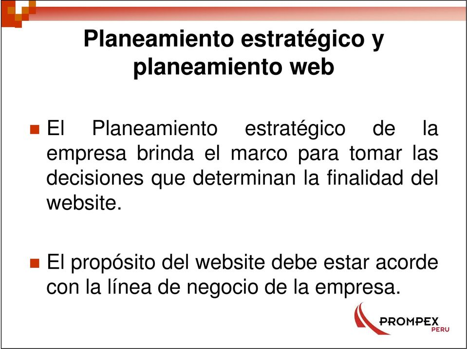 decisiones que determinan la finalidad del website.