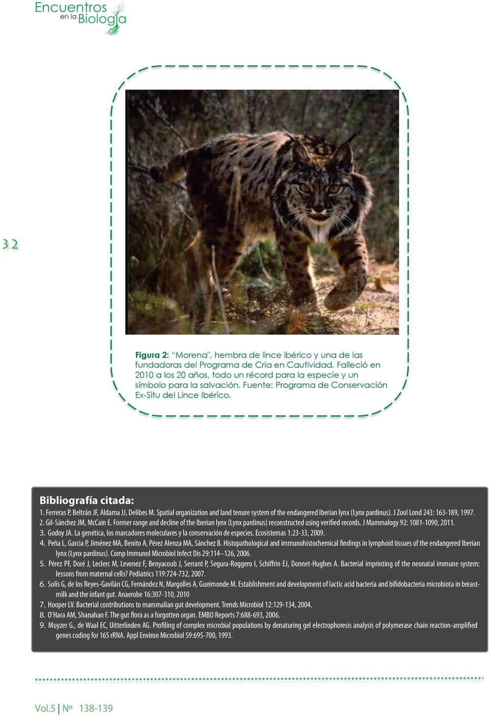 Spatial organization and land tenure system of the endangered Iberian lynx (Lynx pardinus). J Zool Lond 243: 163-189, 1997. 2. Gil-Sánchez JM, McCain E.