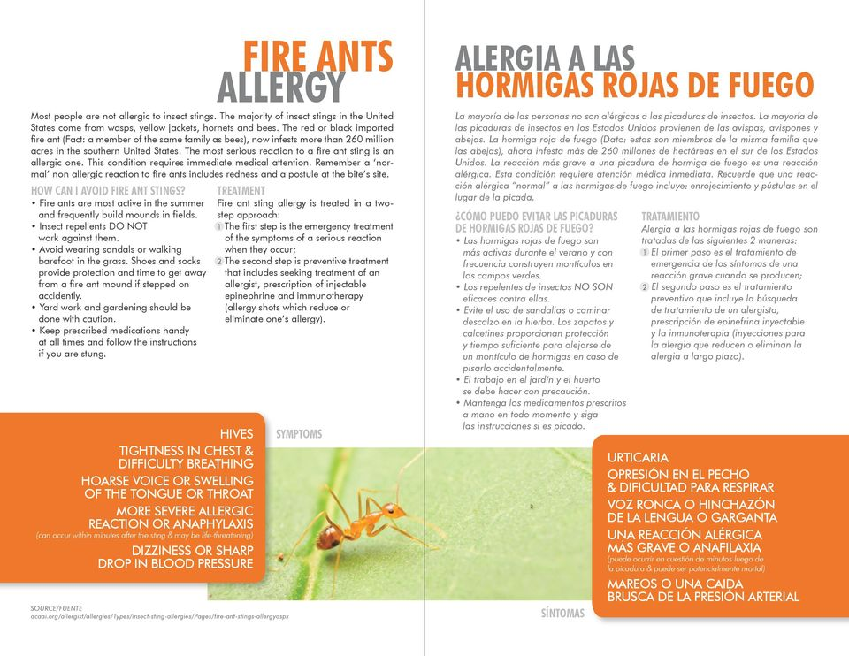 The most serious reaction to a fire ant sting is an allergic one. This condition requires immediate medical attention.