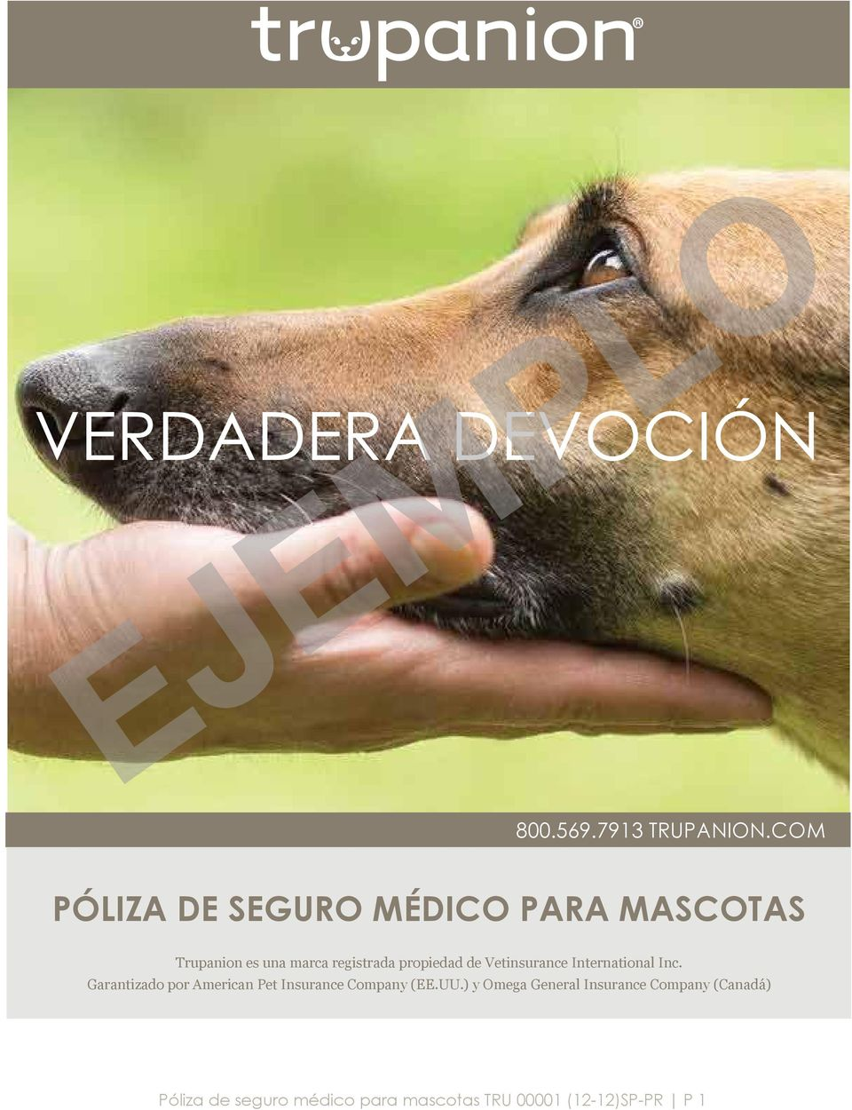 propiedad de Vetinsurance International Inc.