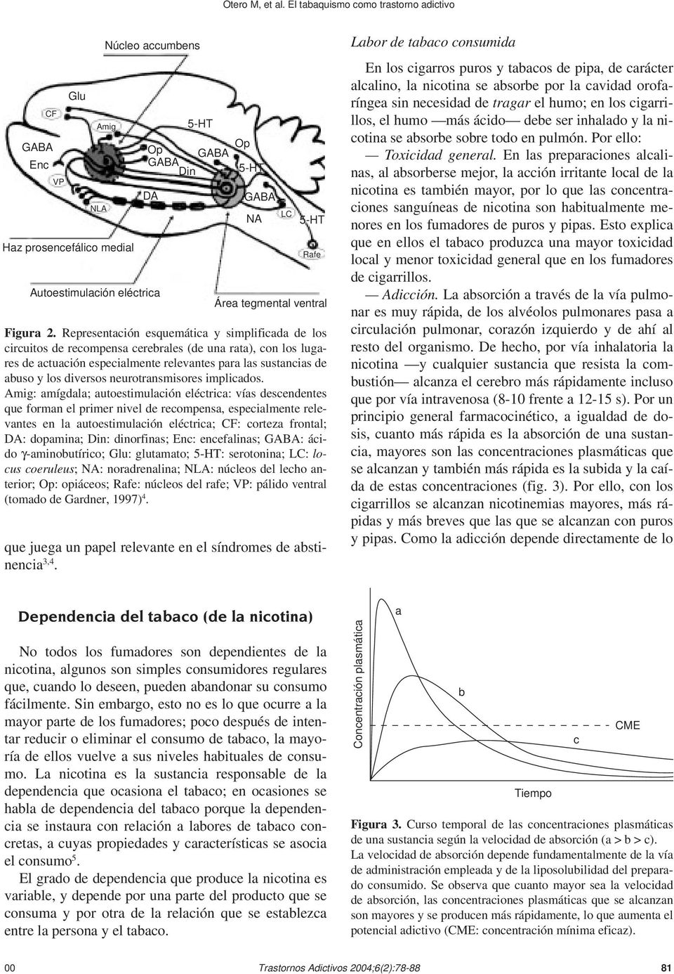 neurotransmisores implicados.
