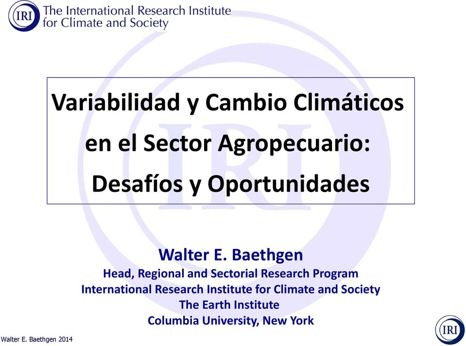 Baethgen Head, Regional and Sectorial Research Program