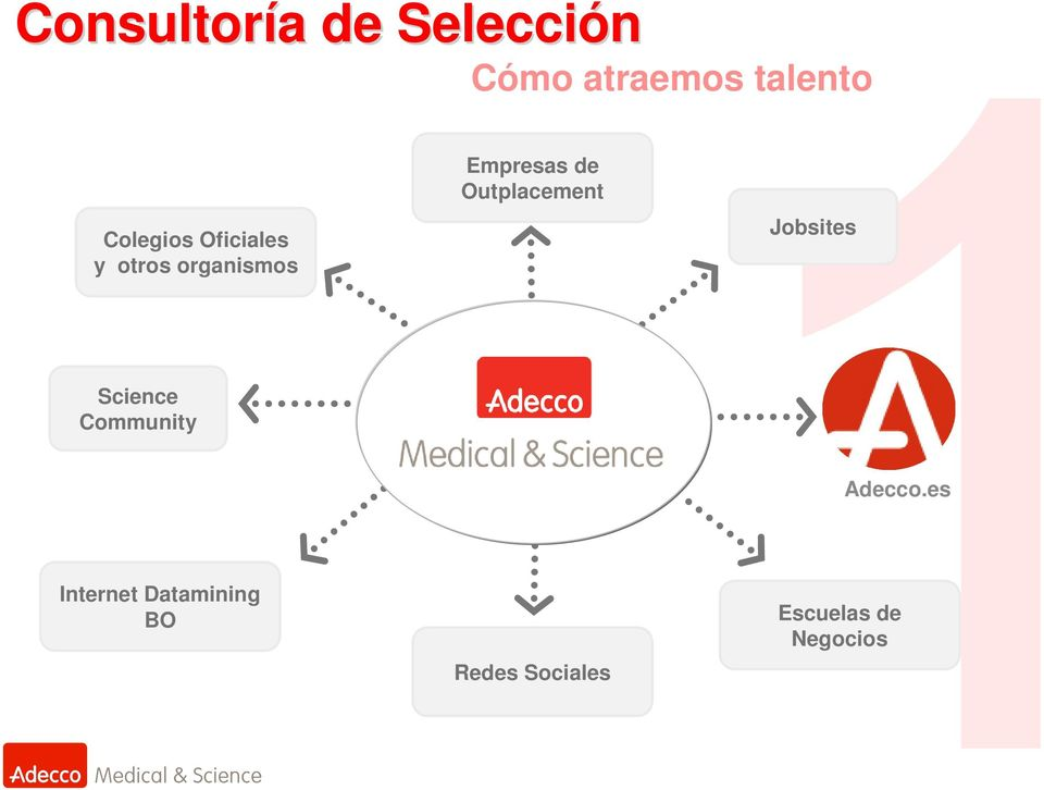 Outplacement Jobsites Science Community Adecco.