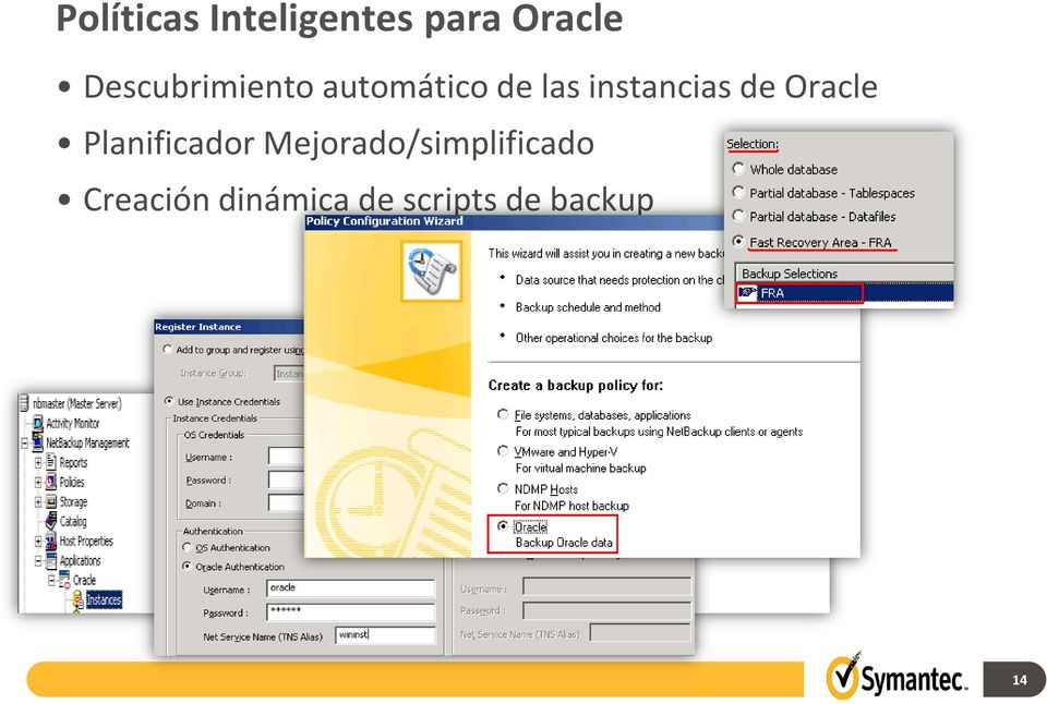 instancias de Oracle Planificador