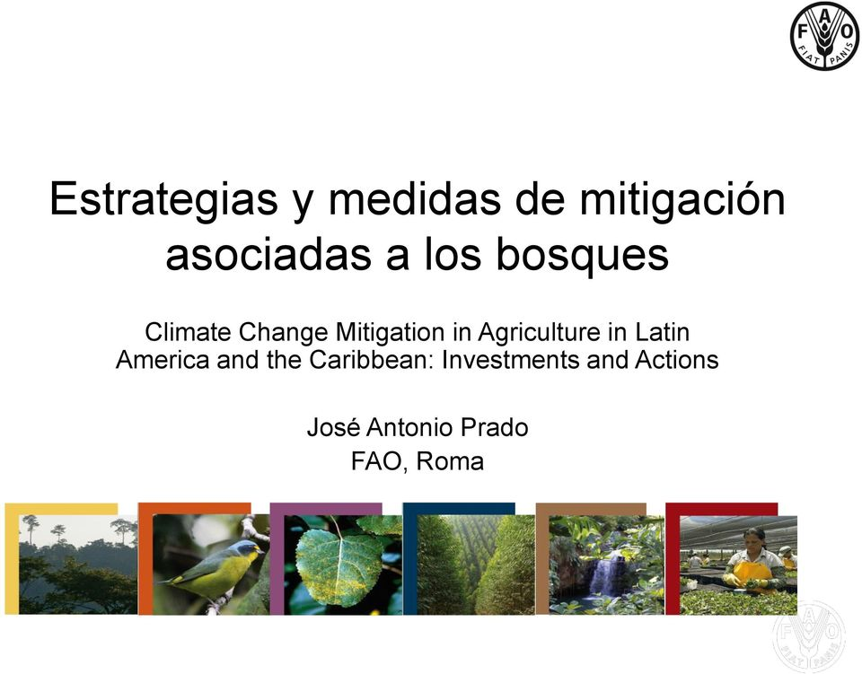 Agriculture in Latin America and the Caribbean: