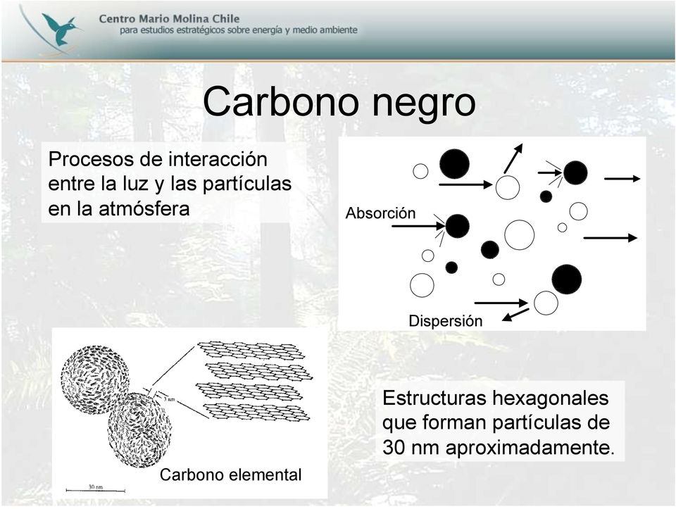 Carbono elemental Estructuras hexagonales