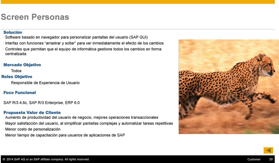4.6c, SAP R/3 Enterprise, ERP 6.