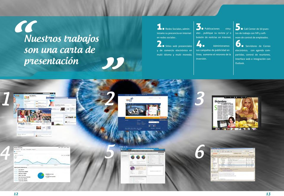 Publicaciones virtuales, publique su revista y/ o boletin de noticias en internet. 4.