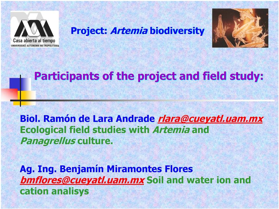 mx Ecological field studies with Artemia and Panagrellus