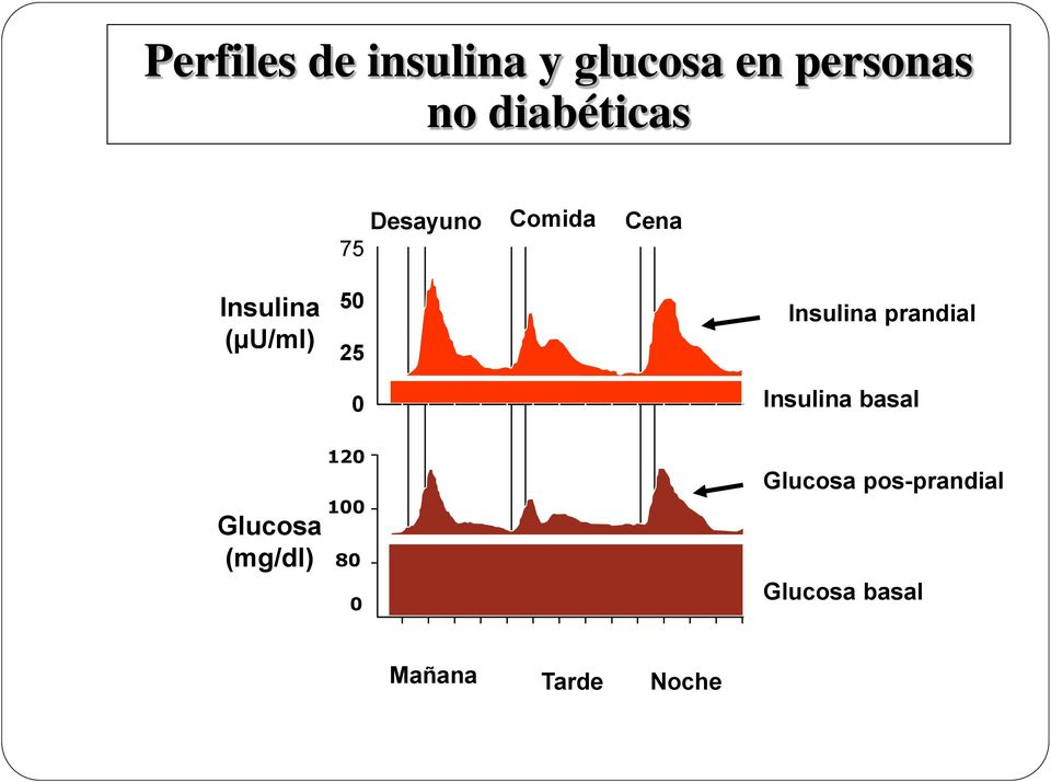 25 Insulina prandial 0 Insulina basal Glucosa (mg/dl)