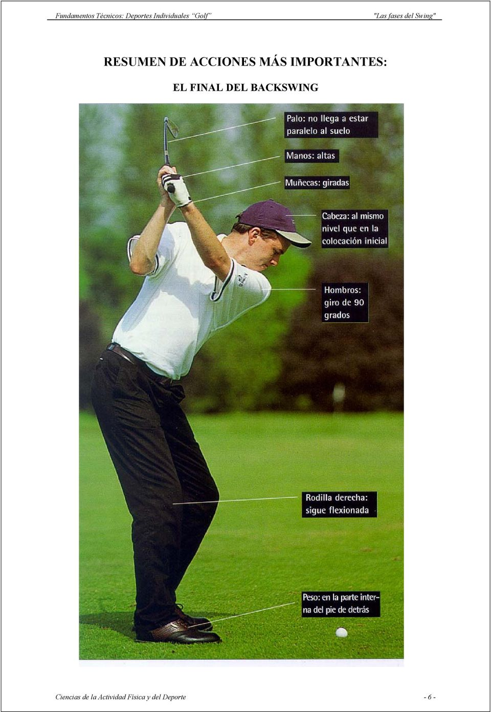 BACKSWING Ciencias de la