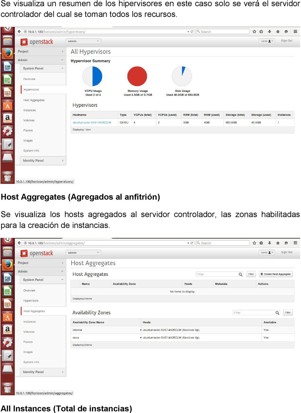 Host Aggregates (Agregados al anfitrión) Se visualiza los hosts agregados al