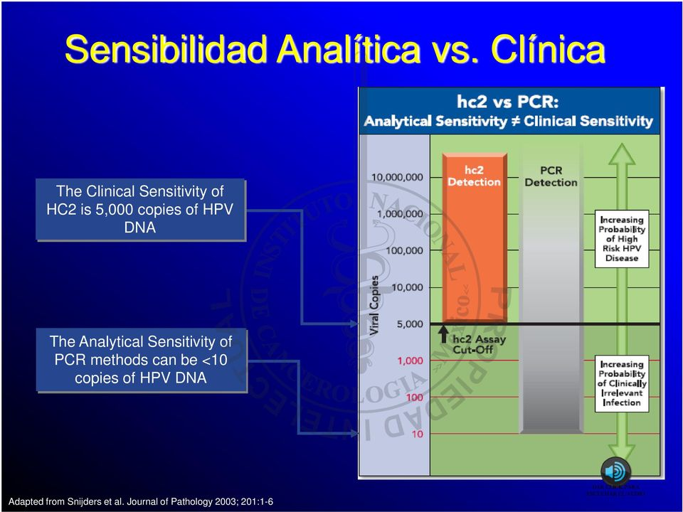 of HPV DNA The Analytical Sensitivity of PCR methods can