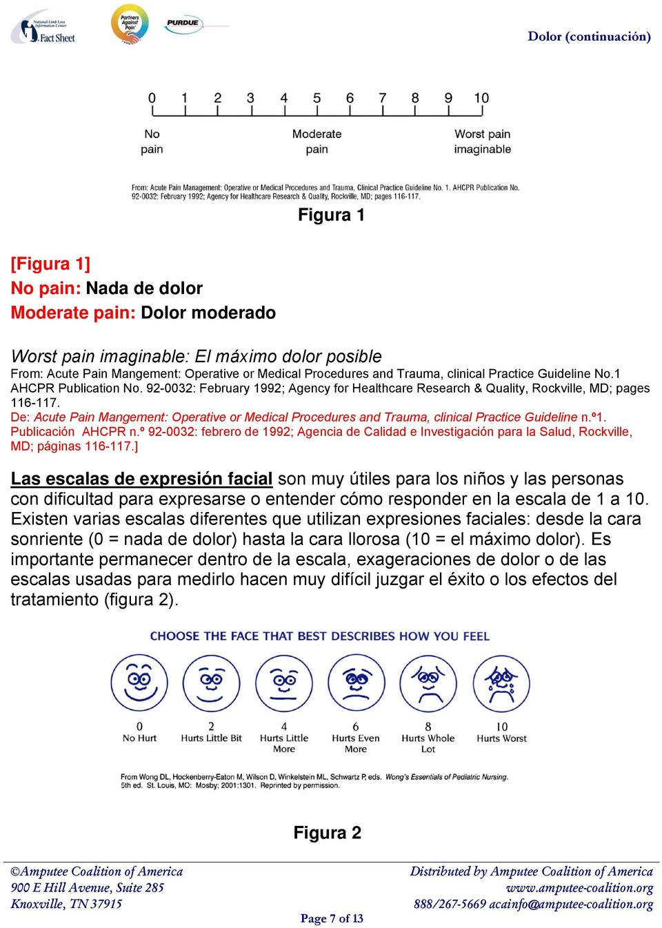 De: Acute Pain Mangement: Operative or Medical Procedures and Trauma, clinical Practice Guideline n.º1. Publicación AHCPR n.