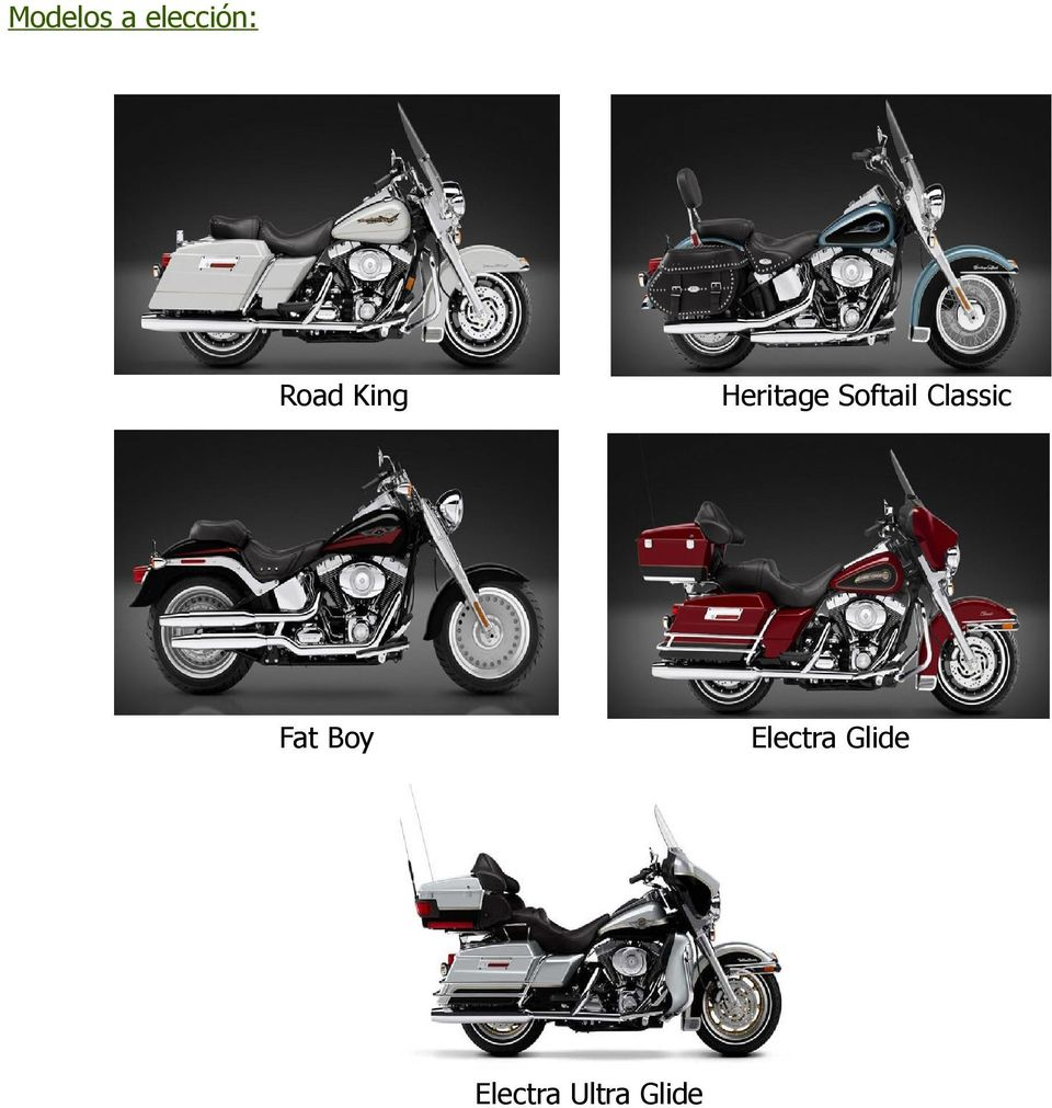 Softail Classic Fat Boy