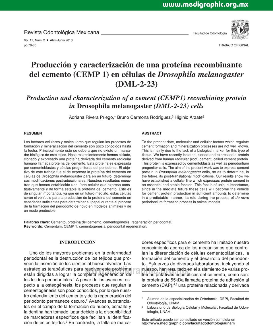 Production and characterization of a cement (CEMP1) recombining protein in Drosophila melanogaster (DML-2-23) cells Adriana Rivera Priego,* Bruno Carmona Rodríguez, Higinio Arzate RESUMEN Los