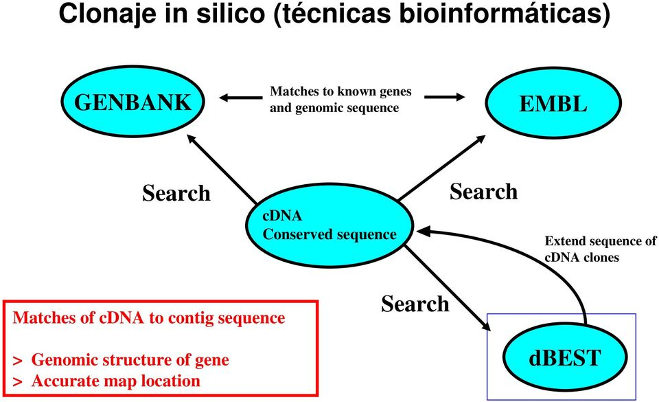 sequence Search Extend sequence of cdna clones Matches of cdna to