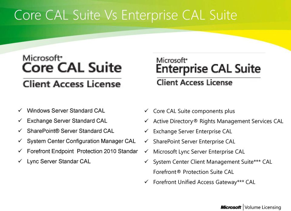 SharePoint Server Enterprise CAL Forefront Endpoint Protection 2010 Standar Microsoft Lync Server Enterprise CAL Lync