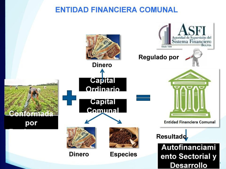 Capital Comunal Especies Regulado por