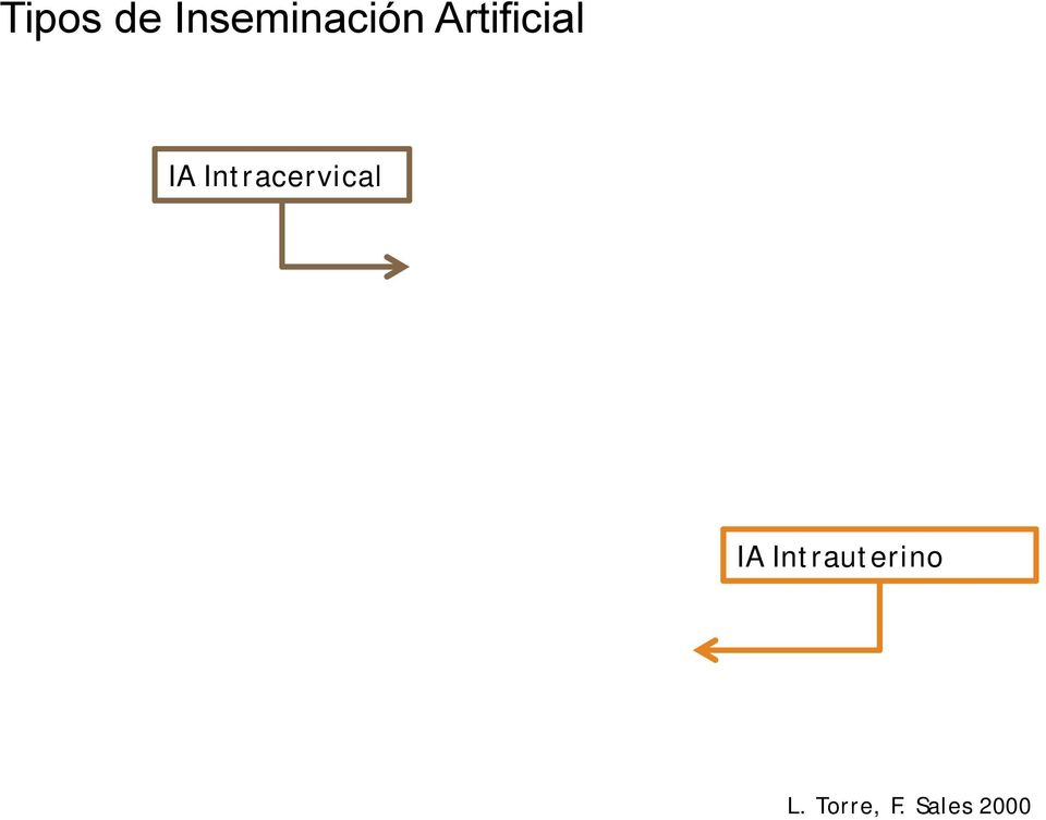 Intracervical IA