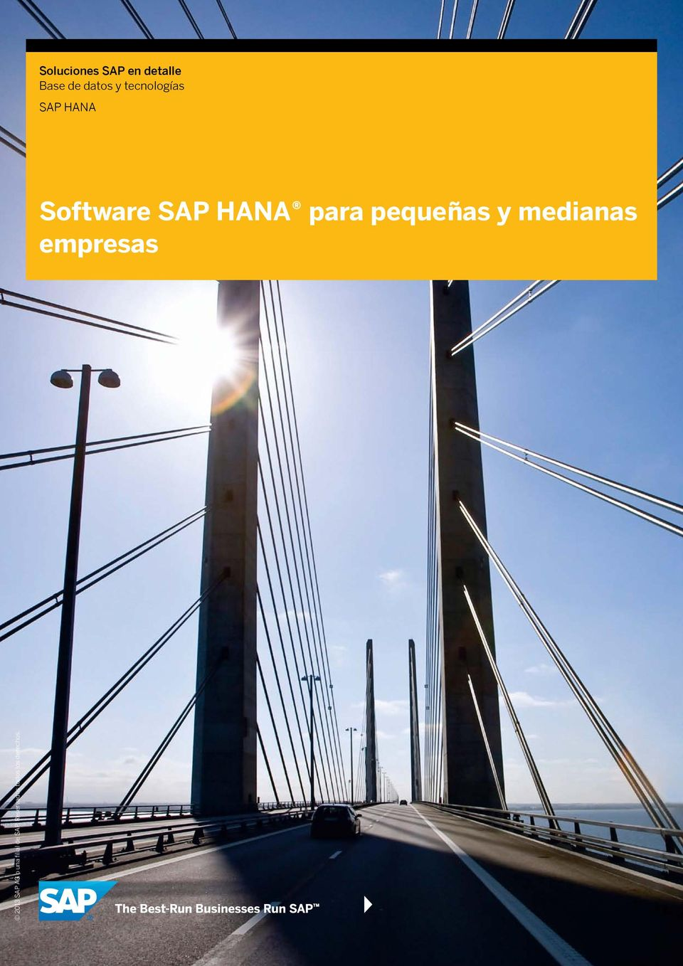 SAP HANA Software SAP HANA