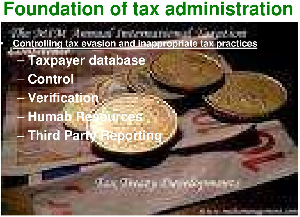 tax practices Taxpayer database Control